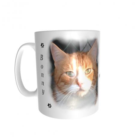 mug photo chat et nom